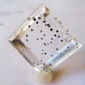 SOLD:Pyrite...